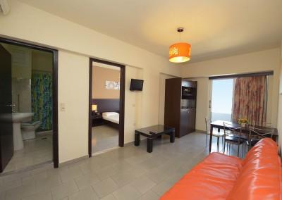 one_bedroom_apartment (19)